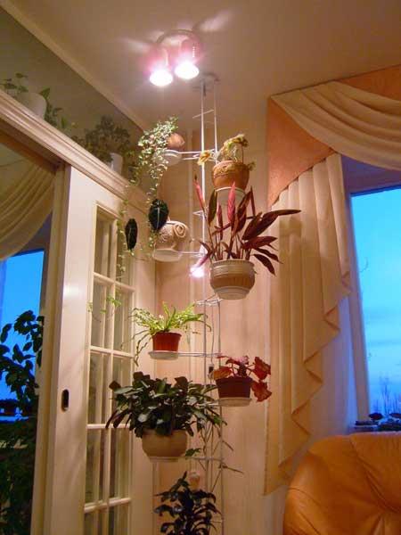 Как сделать освещение комнатным цветам