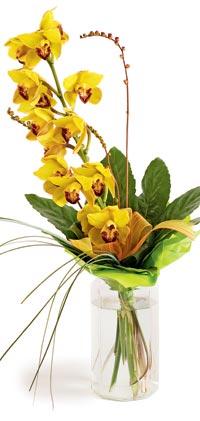 http://www.flowersweb.info/images/interior/floskazka5.jpg