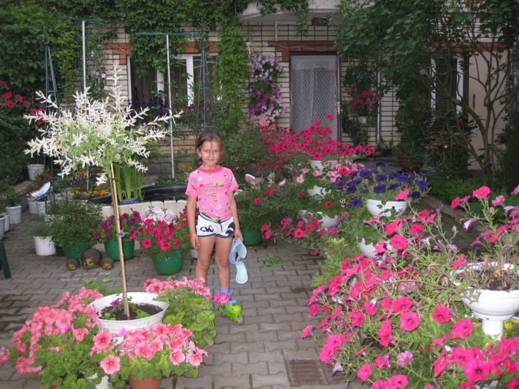 Когда можно сажать цветы дома 14